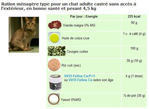 Menu pour chat sur cuisine-a-crocs.com