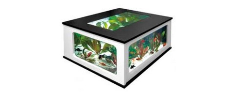 Table basse aquarium Atlantis