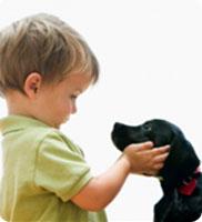 Quel animal de compagnie choisir pour son enfant ?