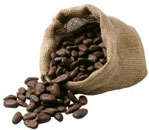 fèves cacao