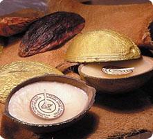 Bougies noix de coco