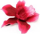 Pince orchidée Asos