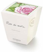 Bougie à la rose Esteban