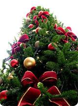 Cadeaux de Noël, quelques idées pour Lui