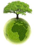 Des gestes quotidiens pour sauver la planète