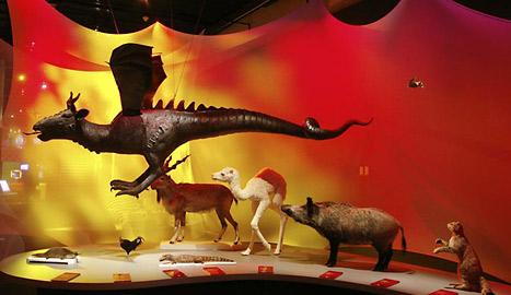 histoire des dragons dans le monde