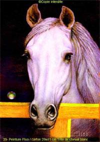 peinture fluo, cheval