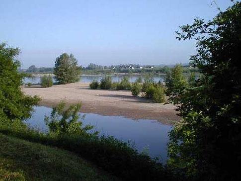 les eaux de la Loire