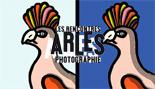 Arles 2008 expo photo